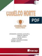 Informe Codelco Norte. (Autoguardado)