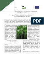 Vulnerabilidad de los bosques y sus servicios ambientales al cambio climático