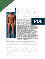 Qué es la reflexología.doc