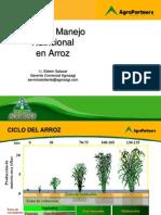 Plan Manejo Nutricional en Arroz - Agrosagi