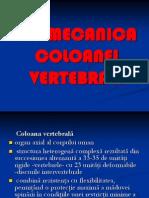 BIOMECANICA COLOANEI VERTEBRALE