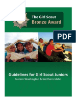 Bronze Award1 Girl Guidelines