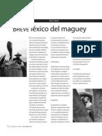 Breve Lexico Del Magueye