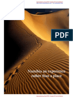 Namibia Marketing Environment & Branding Evaluation