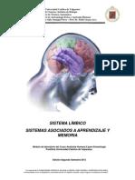 Sistema Limbico Hipocampo Kine Pucv 2012