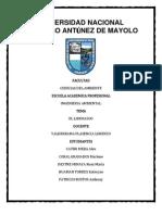 DELEGACION DE AUTORIDAD.docx