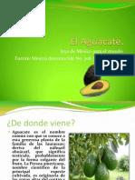 El Aguacate.pptx