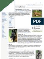 Wiki:Belgian Shepherd Dog (Malinois)