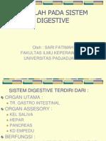 Masalah Pada Sistem Digestive