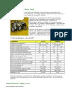 Carburador_Brosol_2E7.doc