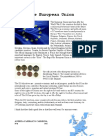 The European Union2