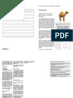 Produktinfo Kamelhalterhaftpflichtversicherung bei GutGuenstigVersichert