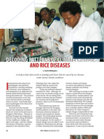 Rice Today Vol. 12, No. 3 Decoding Patterns of Climate Change and Rice Diseases