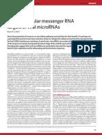 4.Messenger RNA targets of viral microRNAs