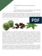 Calidad Agroindustrial Del Aceite de Higuerilla