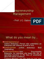 Entrepreneurial Perspectives