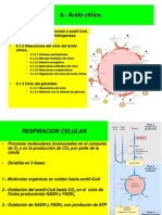 Acido citrico.ppt