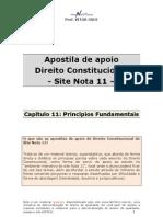 Apostila de Apoio-cap 11-Principios Fundamentais