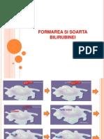 formarea bilirubinei