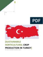 2010. Turkey (Daniel LaMere)Agricultura Sustentable