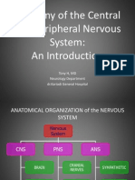Anatomy of CNS and PNS