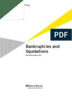 Bankruptcy Primer.pdf