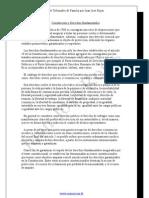 Manual de Tribunales de Familia por Juan José Rojas (39 PAG.)