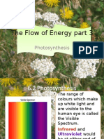 The Flow of Energy part 3