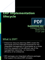 Erp Implementation Life Cycle