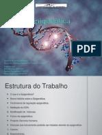 Epigenética CAB (Ana Miranda's conflicted copy 2011-06-14)