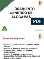 Mejoramiento Genetico de Alogamas 2011