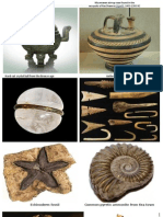 Artifacts and Fossils