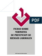 FichasFremap.pdf