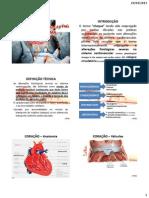 Alterações fisiológicas severas no sistema cardiovascular choque