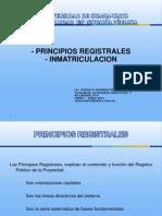 Principios Registrales 2012-1
