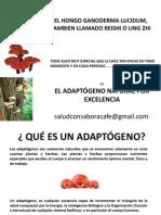 adaptogeno-120616131811-phpapp01