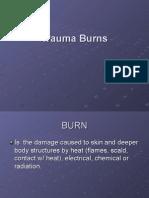 Fisiología cardiaca | Burn | Blood Plasma