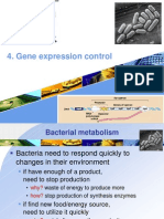 4. Control Expresion of Gene