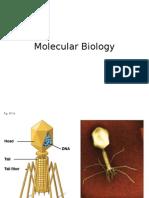 Molecular Biology Lecture