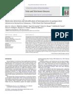 SILVEIRA 2013 Molecular detection and identification of hemoparasites in pampas deer