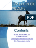 Conservation of Wildlife