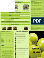 Folleto Aceituna Mesa_tcm5-533