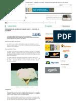 Enfermedades de avicultura de traspatio_ parte 3 - control de la coccidiosis - Artículos Avícolas de El Sitio Avícola - El Sitio Avicola