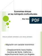 economías étnicas