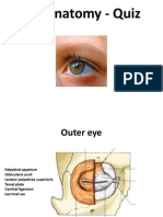 Eye Anatomy - Quiz