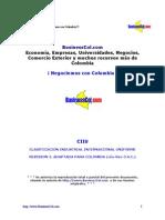 Clasificación Industrial Internacional Uniforme (CIIU)