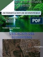 Determinacion de Los Ecosistemas