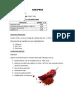 Informe Pimientos II.docx