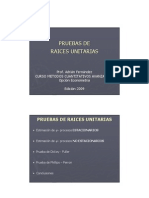 03 Pruebas Raices Unit