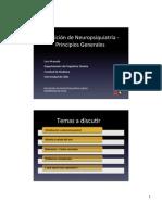 03 Def Neuropsiquiatria Ppios Grales